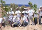Doha Bank employees plant trees
