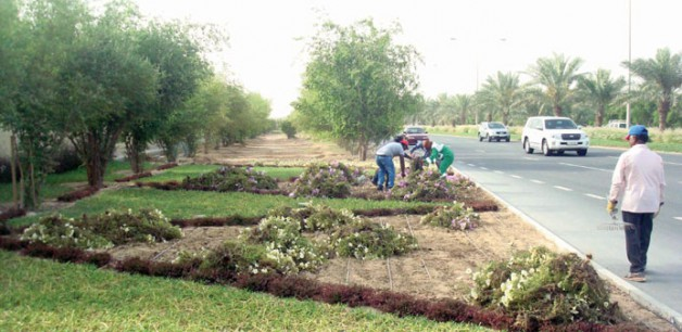 Public Gardens Department planted 30,000 seasonal flowers in April